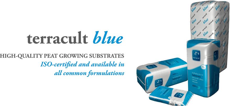 Terracult blue