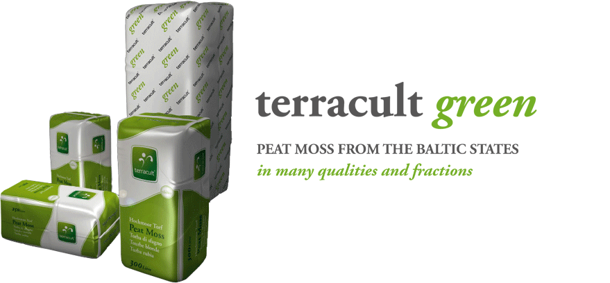 Terracult green